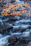 Fall Color and Flowing Brook Design Fotoprint van Vincent James