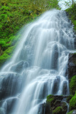 Scene at Fairytale Falls Photographic Print by Vincent James