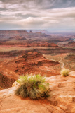 Beautiful Dead Horse Point Reprodukcja zdjęcia autor Vincent James