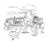 A woman at a plant sale looks at signs reading: Annuals $6.00Perennials … - New Yorker Cartoon Premium Giclee Print by Sidney Harris