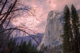 Late Afternoon Mood at El Capitan Fotoprint van Vincent James
