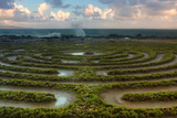 Scene at Kapalua Labyrinth Maui Fotografie-Druck von Vincent James