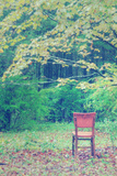 Fall Seat, Catskill Mountains, New York Photographic Print by Vincent James