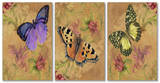 Aqua Butterfly Garden Triptych Art Wood Sign
