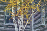 New Hampshire Cabin Detail Fotoprint van Vincent James