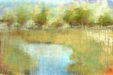 Guild Pond II Prints by Maeve Harris