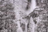 Upper Meets Lower Yosemite Falls, Infrared Photographic Print by Vincent James