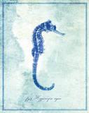 Seahorse B Art
