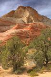 Scene on the Zion Plateau Reproduction photographique par Vincent James
