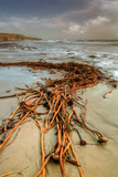 Beach Design and Seascape Fotoprint van Vincent James