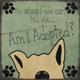 Am I adopted Prints by Jo Moulton