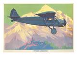 Stinson Detroiter Airplane Posters