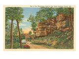 Ozark National Forest, Arkansas Poster