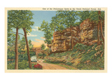 Ozark National Forest, Arkansas Poster