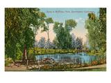 Mckinley Park, Sacramento, California Print