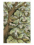 Babies in Nests Posters