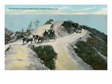 Vintage Catalina Island Prints