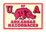 Arkansas Razorback Mascot Plakater