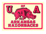 Arkansas Razorback Mascot Kunstdrucke