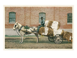 Cotton Cart Pulled by Horse Affiches