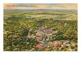 Overview of Siloam Springs, Arkansas Poster