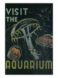 Visit the Aquarium Poster Prints