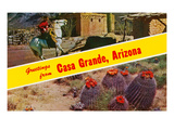 Greetings from Casa Grande, Arizona Posters