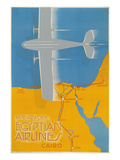 Airplane over Egypt Print