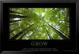 Wachstum, Englisch Kunstdrucke
