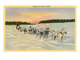 Siberian Dog Team, Alaska Prints