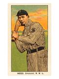 Early Baseball Card, Weed Prints