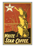 Frogs Reaching for Star Poster