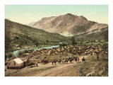 Corral on Cattle Drive Prints