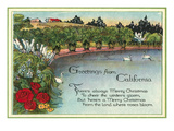 Christmas Greetings from California Pond Posters