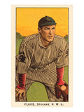 Early Baseball Card, Flood Prints