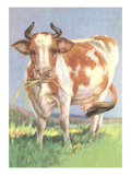 Cow Posters