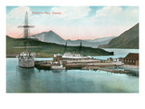 Unalaska Bay, Alaska Prints