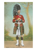 Sergeant, 79th Cameron Highlanders Art