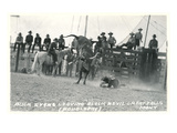 Thrown Bull-Rider, Montana Prints