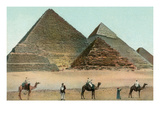 Camels by Pyramids, Egypt Print