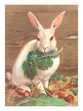 Rabbit with Vegetables Poster