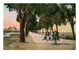 Road to the Pyramids, Cairo, Egypt Prints