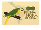 Prima-Nora Cigar Label, Parrot Posters