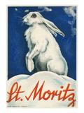 Rabbit in Snow, St. Moritz Posters