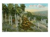 Yumuri Valley, Matanzas, Cuba Prints