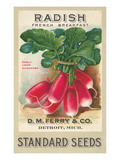 Seed Packet, Radishes Affischer