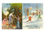 Oranges Versus Snowballs, Stuart, Florida Art