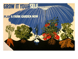 Grow it Yourself Poster Print
