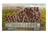 Train Carload of Grapes from Sonoma Prints