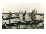 Fellucas on the Nile, Cairo, Egypt Prints